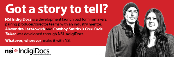 About NSI IndigiDocs